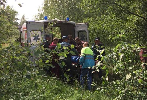 В Пинском районе спасли пропавшую в лесу пенсионерку