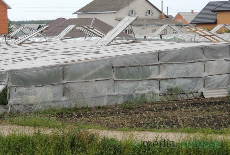 Практически возле каждого дома в Ольшанах стоит теплица