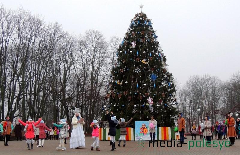 Больше месяца новогодняя ель из Бродче украшала площадь в Столине