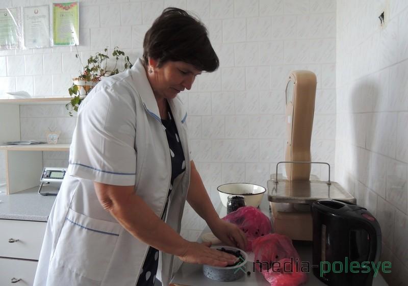Лаборант М.Ф. Сычевич сначала взвешивает ягоды