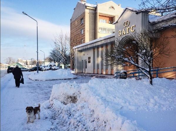 нядзеля #медиаполесье #mediapolesye #luninets #belarus #winter #wintertime #dog