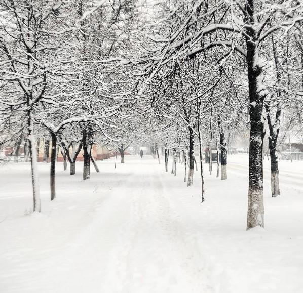 belarus #winter #wintertime #morning #snow #snowfall #snowstorm #light