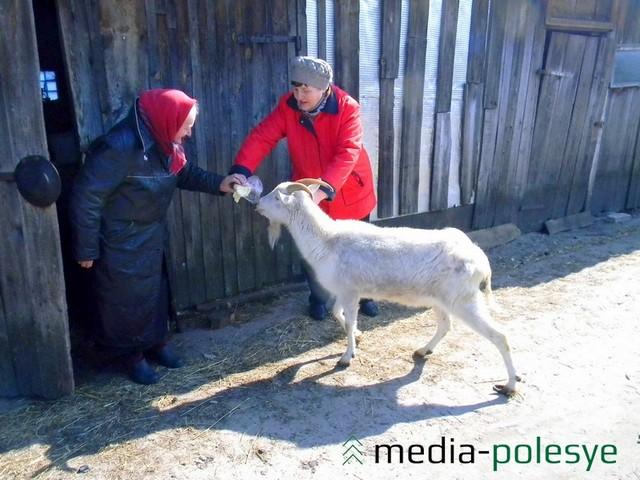 Подруга Марии Миновны, Анна Магер (слева) рассказывает, что коза Снежана очень ревнивая и своенравная и слушает только свою хозяйку