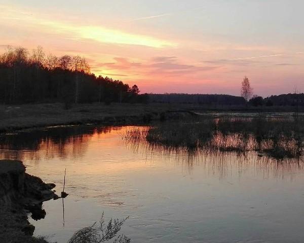 Фото @win32krpv #медиаполесье #mediapolesye #naturelover #lake #water