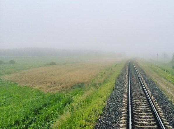 #чыгунка #жд #пути #туман #железнаядорога #бч #railway