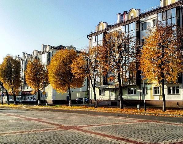 #осень #деревня #листья #небо #осеньвгороде #пинск #площадь #autumn