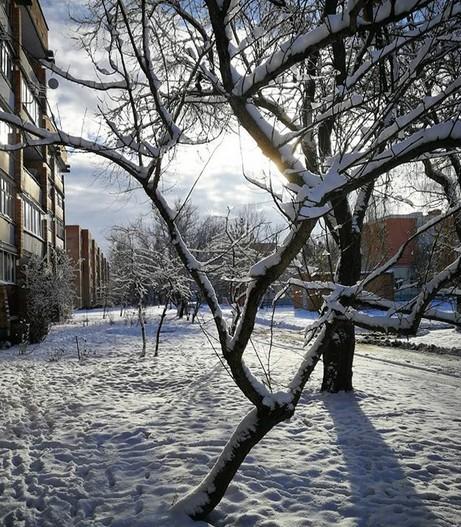 #snowland #snow #natgeobelarus #belarus #pinsk #stolin #luninets #маякраiнабеларусь