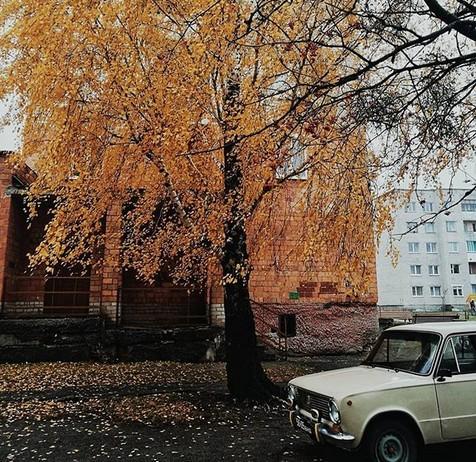 #pinsk #зима #буковель #опрос