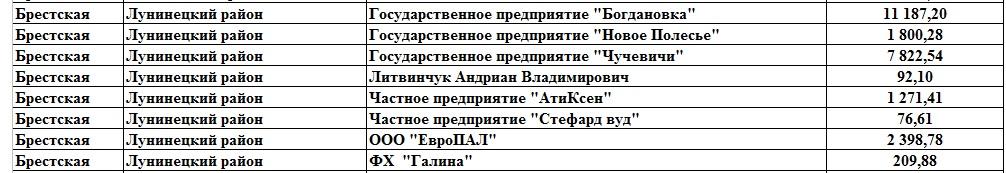 Должники в ФСЗН по Лунинецкому району, по состоянию на 1.10.2017
