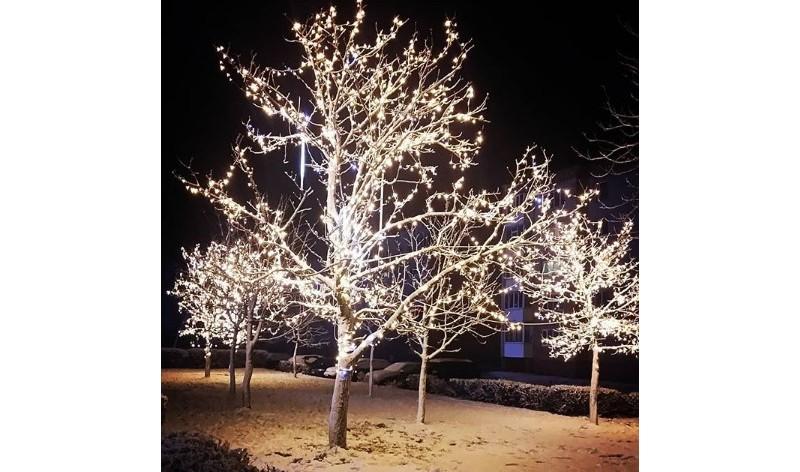 #winter #evening #christmastree #lightning #garland #beautiful #decorations #holidays