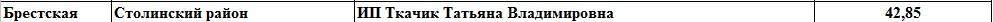 Должники в ФСЗН по Столинскому району, по состоянию на 1.10.2017