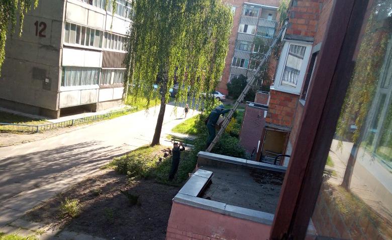 Фото канала Zello «Пинск ГАИ»