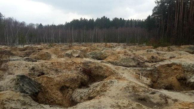 Последствия незаконной добычи янтаря в Украине. Фото Gordon.ua, correspondent.net