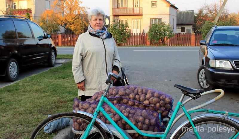 Надежде из Давид-Городка посоветовали купить картошку сорта «Бриз»