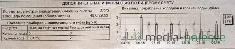 Не очень полезная информация в новой жировке. Хотя по графику можно наглядно отследить скачки потребления горячей воды