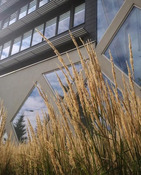 #art #architecture #warszawa #nice #disign