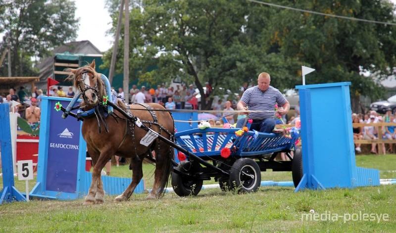 Задняя парковка – наиболее сложное упражнение. Лошадь должна сдать задом и попасть в условный гараж