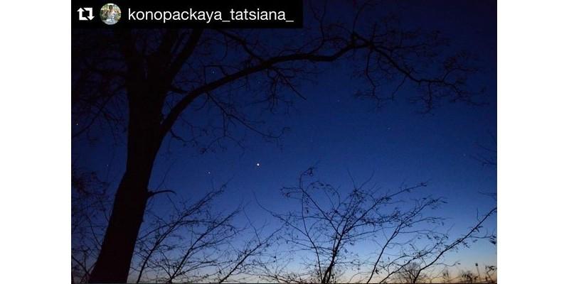 #небо, #звезды, #деревья, #природа, #красота, #вечер, #evening, #tree, #stars, #nature, #photo, #beautybesideyou, #nice, #моифото, #люблюфотографировать