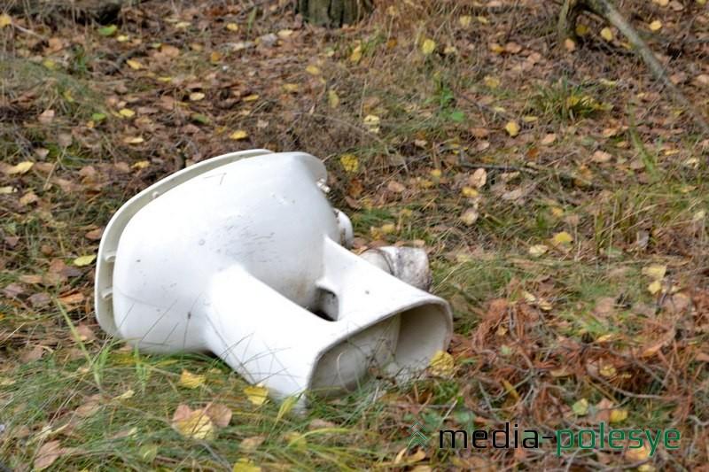 В лесу можно найти что угодно. Фото уборки в 2013 году.