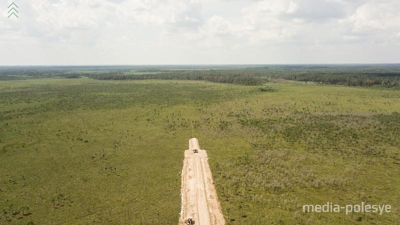 Строительство дороги в Ольманских болотах. Фото И. Муравьёва