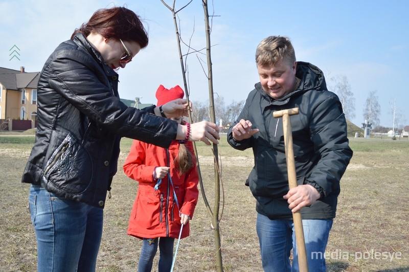 Сквер семейных деревьев появился в Лунинце