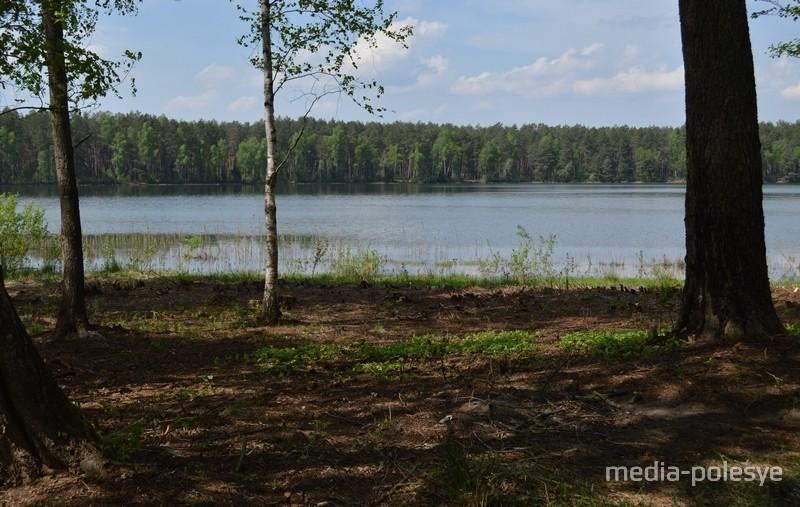 Раньше вид на озеро «загромождали» кустарники и деревья