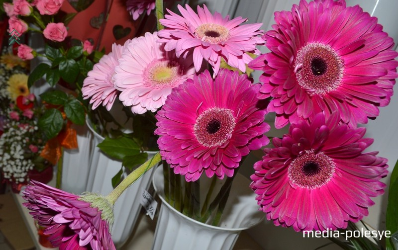 Герберы, ирисы, хризантемы – для особого случая и просто в знак внимания