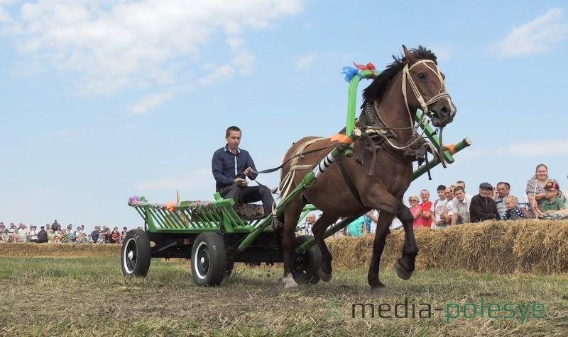 Победил в соревнованиях конных упряжек экипаж Анатолия Пытеля