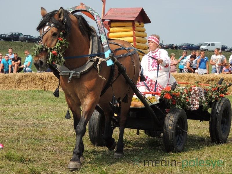 Лилия Витун и кобыла по кличке Птичка – участники соревнований конных упряжек