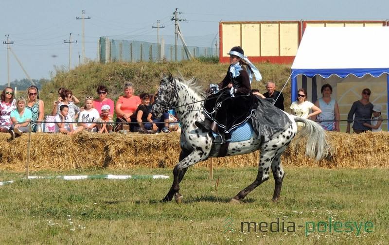 Девушка в женском седле на датском кнабе. Это единственная в Беларуси такая пятнистая лошадь