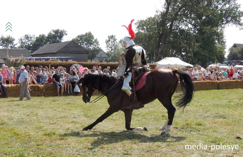 Лошади участников конно-исторического клуба «Золотая шпора» и их всадники покорили зрителей
