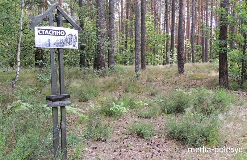 Урочище «Стасино», в котором находится мемориальный комплекс «Жертвам холокоста», – одно из мест, где в субботу будет проходить акция