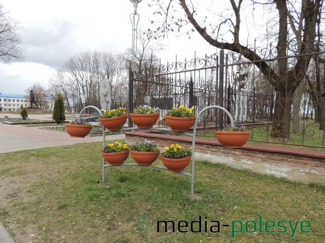 Горшки с виолой красуются вдоль одной из центральных улиц города