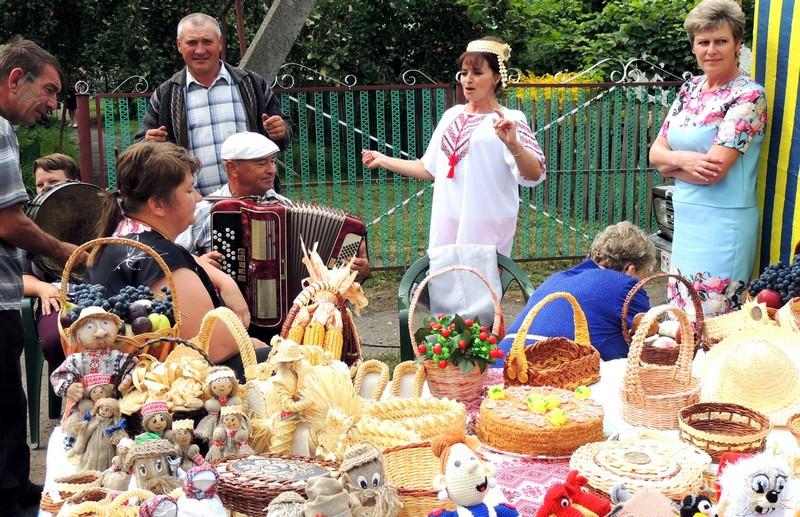 Работали выставки сельсоветов района