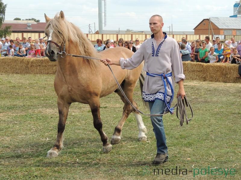 Выводка лошадей СПК никого не оставила равнодушным