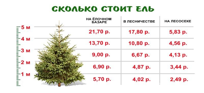 Инфографика Медиа-Полесья