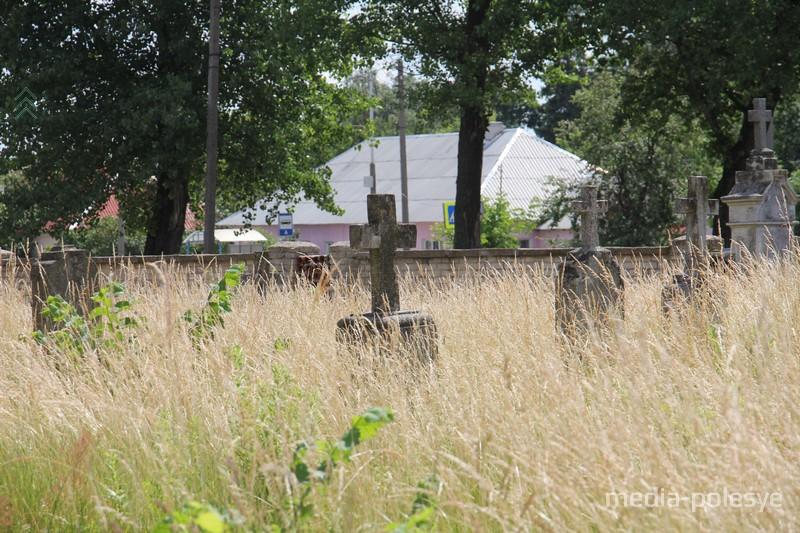 А есть ещё заросшие могилы