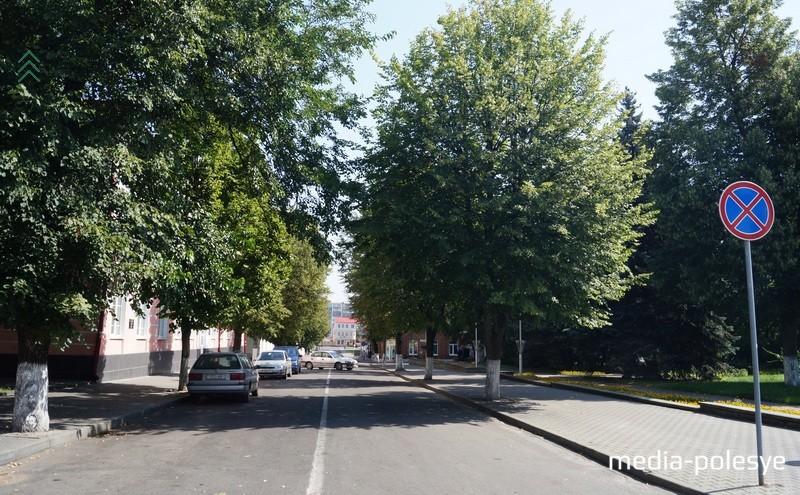 Так выглядит «нетронутая» проезжая часть улицы Ленина. Тенистые липы по обе стороны улицы