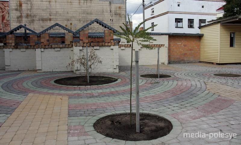 Площадка напротив дома Орды. Одно дерево уже успели сломать неизвестные вандалы