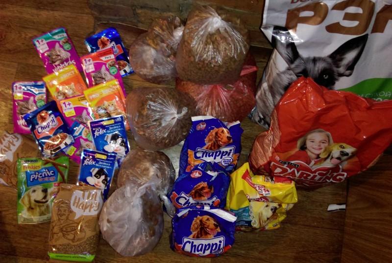 Деньги и корм, собранные на акции. Фото со страницы ВКонтакте организации