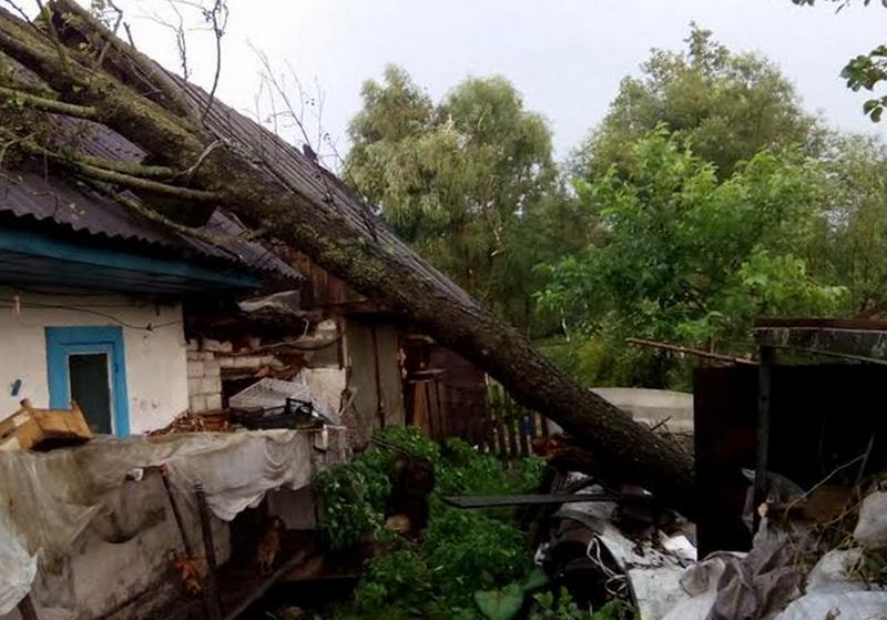 Дерево упало на жилой дом в Микашевичах. Фото Лунинецкого РОЧС