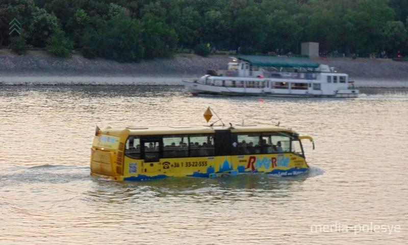 Двухчасовая прогулка на плавающем автобусе обойдётся в 30 евро