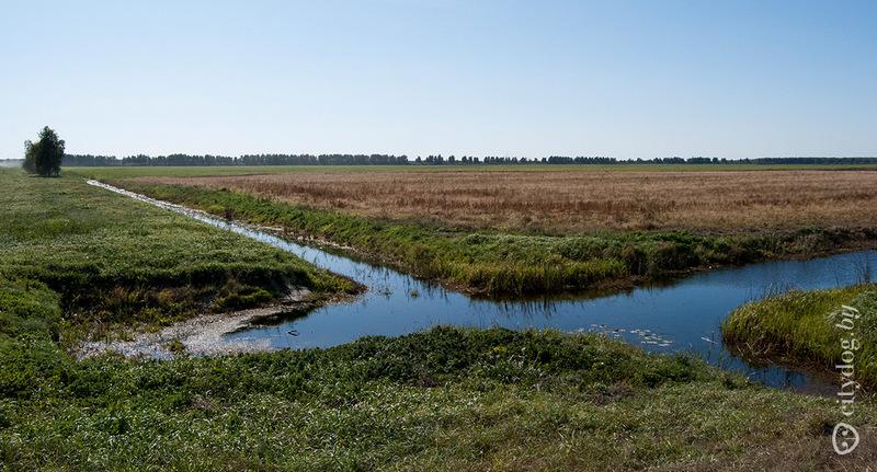 Типичный ландшафт мелиорированной части Полесья