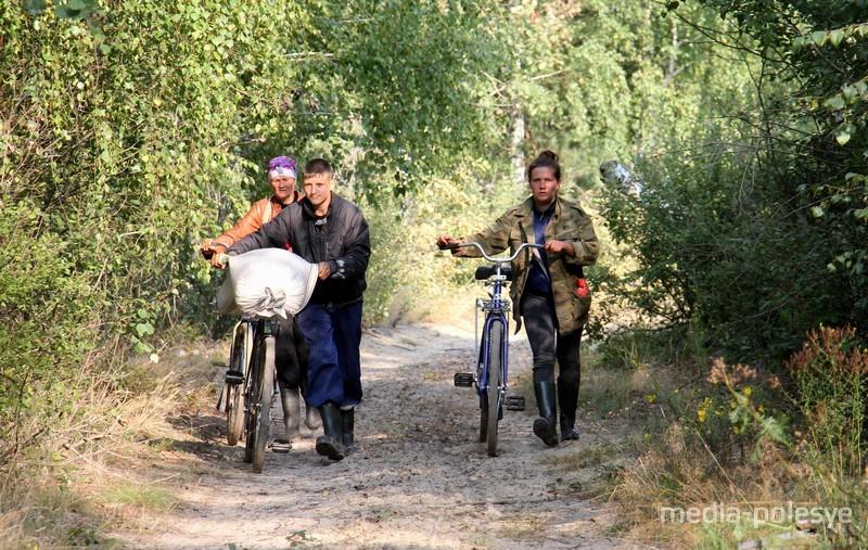 «За клюквой ходят даже милиционеры после дежурства», - признаются ольманцы