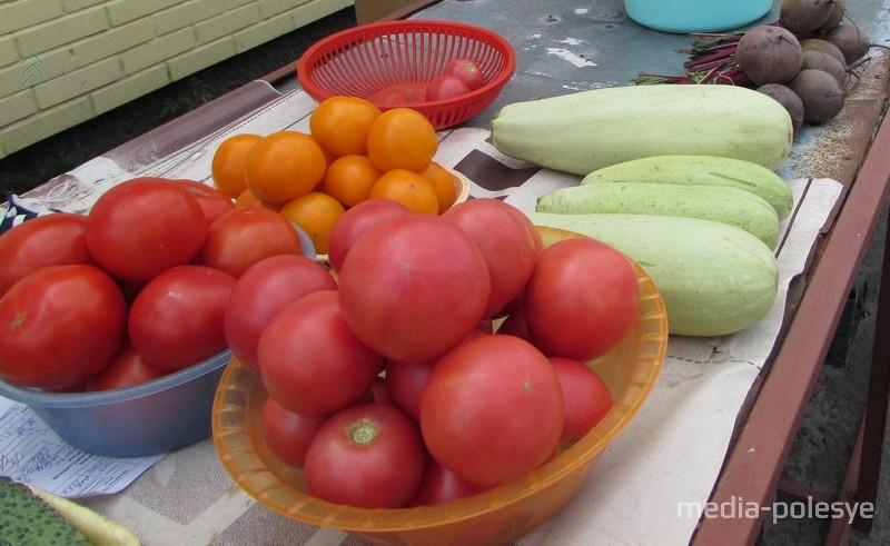 Фермеры в Столинском районе грозят вывезти помидоры на свалку: цена упала до 30 копеек за кило