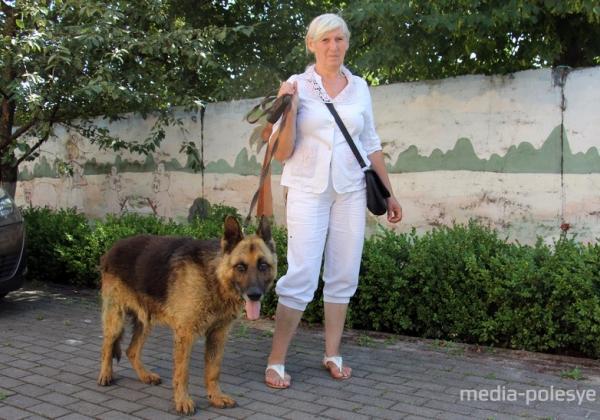 Дружок поедет в Питер. Пенсионерка из Пинска пристраивает отловленных животных