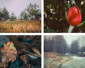 Между осенью и зимой. Топ 15 лучших снимков