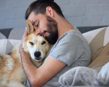 Хотите узнать какой мужчина идеален для вас? В год желтой собаки выбранный пёс расскажет всё о вашем эталоне!