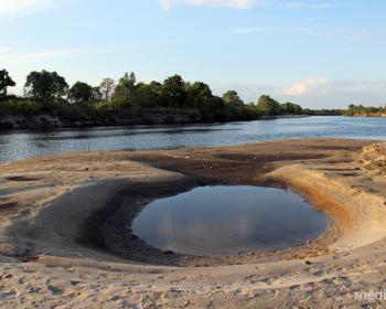 Уровень воды в Припяти, Ясельде, Горыни и других заметно поднимается