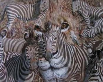Какое животное вы увидели на картинке первым? Ответ многое расскажет о ваших скрытых чертах